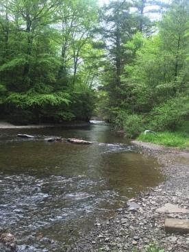 rip-river